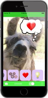 Thunk App Photo